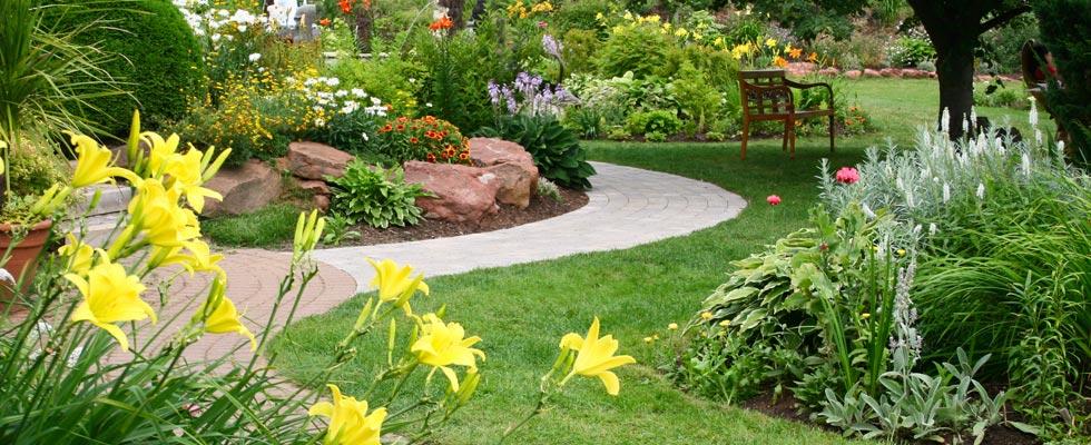 come eliminare le zanzare in giardino hampton