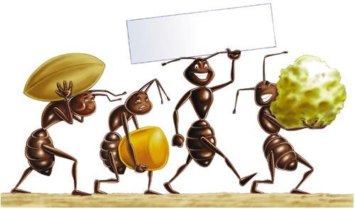 scorte formiche