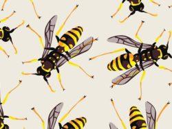 vespe comuni