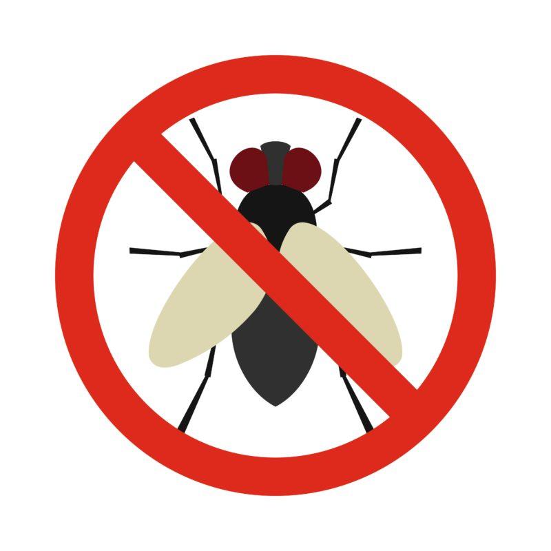 stop mosche